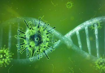 korona virus, corona virus, covid-19, prevencija i liječenje